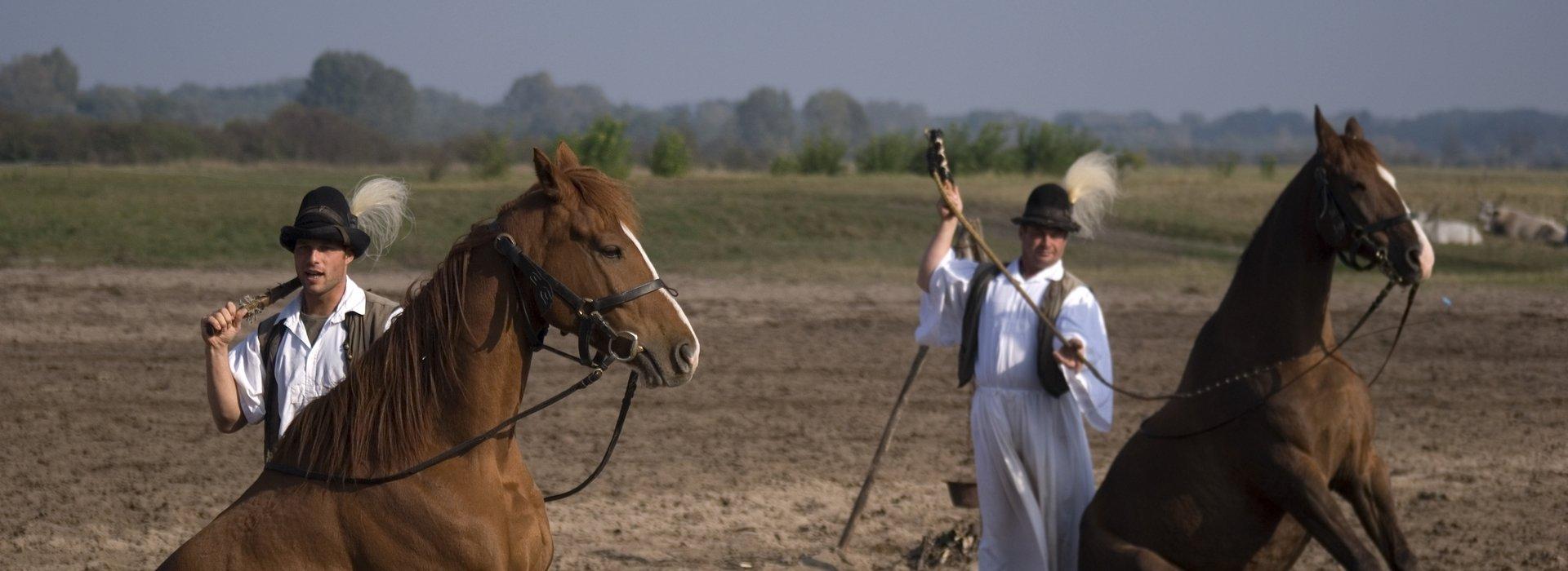 Hortobágy Kultur – Kulturelles Leben in Hortobágy, Ungarn