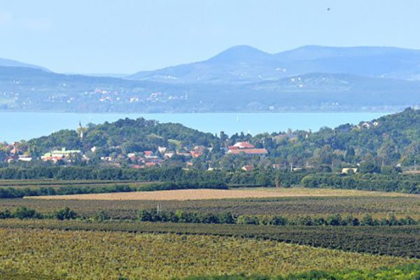 Balatonboglar wineregion