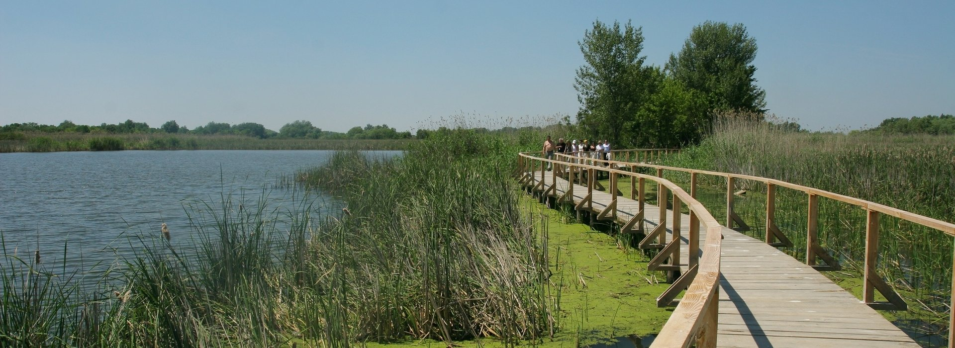 Excursions around Tisza Lake